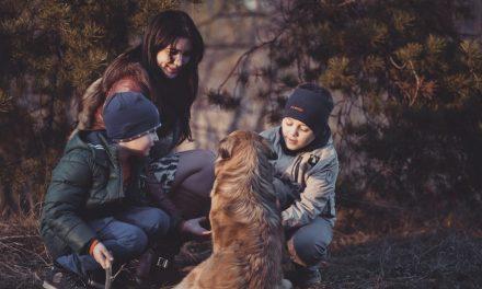 Письмо к моим сыновьям о скромности (то, в чем мы все так отчаянно нуждаемся)