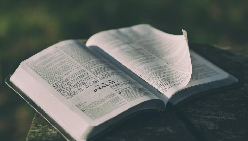 Не верьте слухам: мормоны на самом деле ценят Библию
