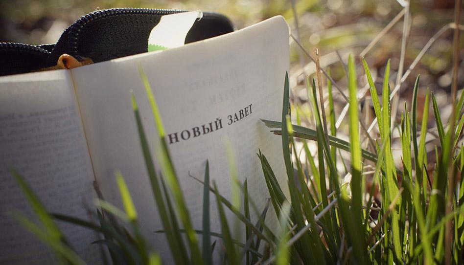 новый завет на фоне травы