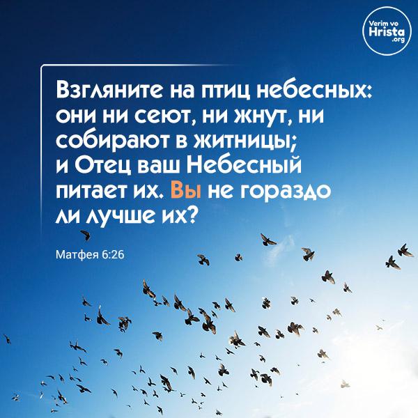 от матфея 6:26